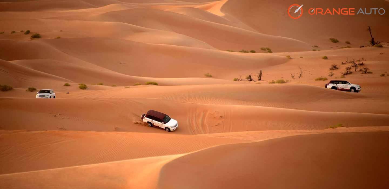Off Road Desert Driving